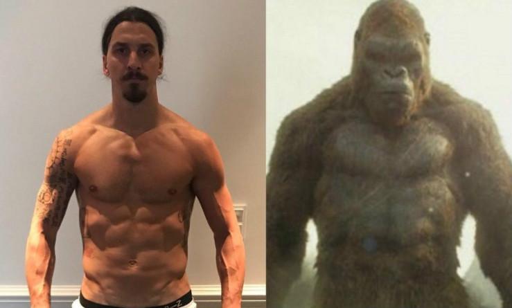 Ibra so sánh mình với King Kong, chờ ngày tái xuất tại Manchester