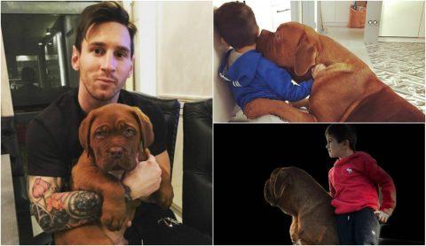 """Cộng đồng mạng phát sốt với hình ảnh chú chó cưng """"Size XXL"""" của Messi"""