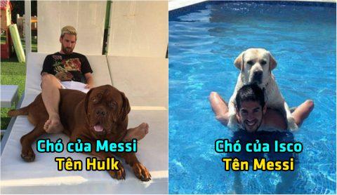 Tiết lộ tên những chú chó cưng của CR7, Messi và 10 siêu sao bóng đá khiến fan phì cười