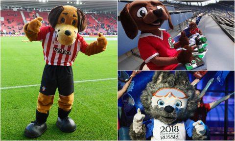 Khám phá ý nghĩa tuyệt vời của những chú chó linh vật đáng yêu nhất trong bóng đá