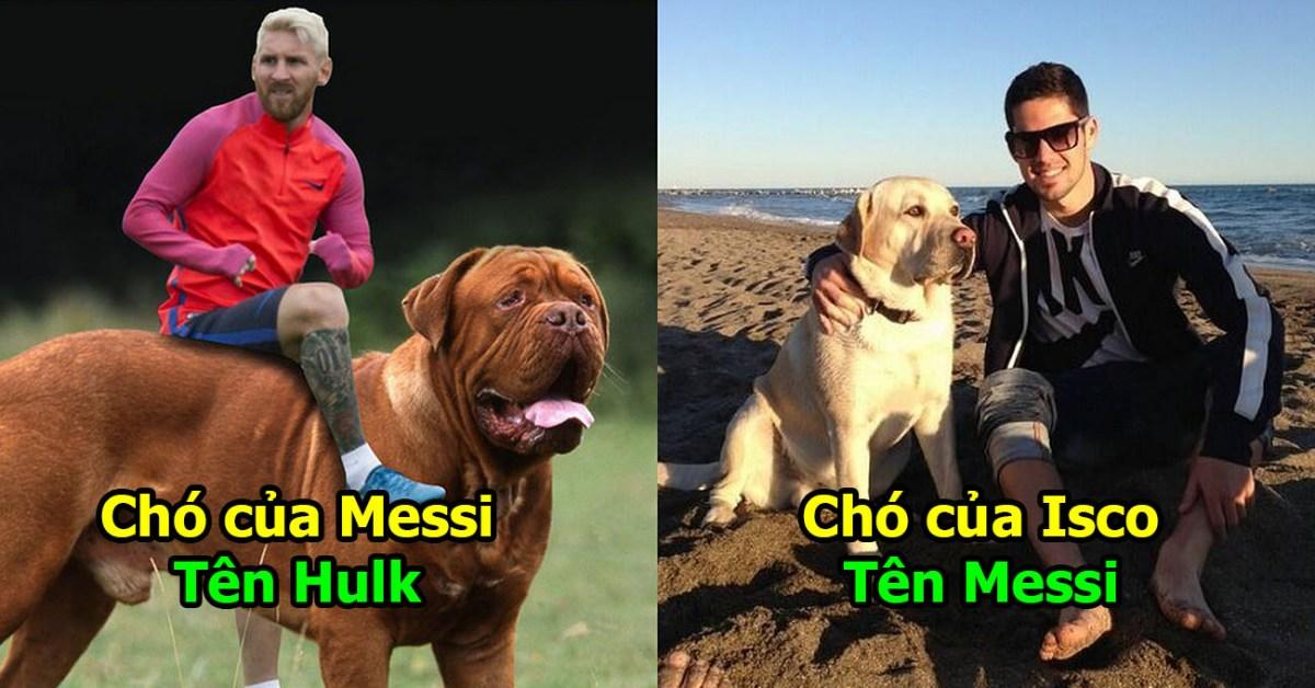 """Tiết lộ những cái tên """"độc nhất vô nhị"""" dàn chó cưng của các siêu sao bóng đá khiến fan không nhịn nổi cười"""