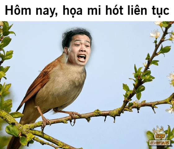"""Cười vỡ bụng trước loạt ảnh chế """"Tông Lào"""" chào thua """"Tổ ong Việt"""", Công Phượng """"gáy"""" vang ao làng"""